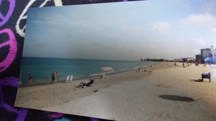 Venice Beach - Venice, Fl. 2000-2001